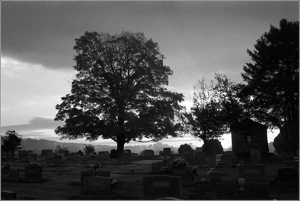 Riverview Cemetery dawn view toward Pantops