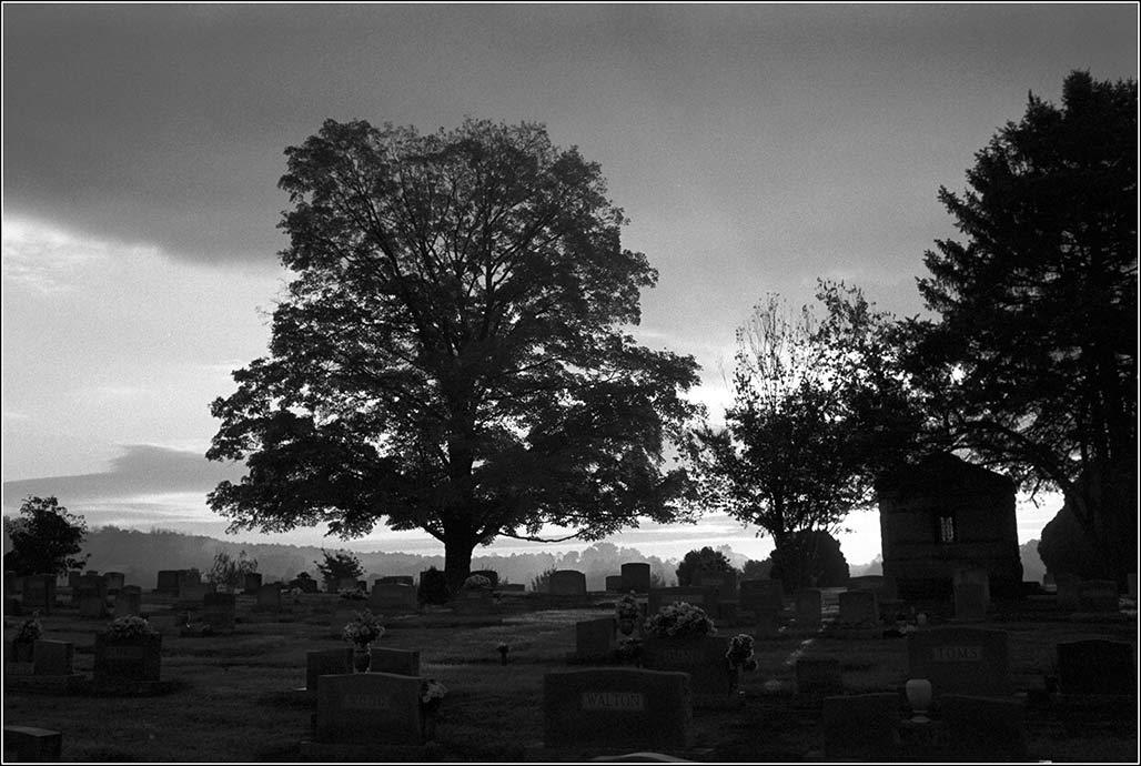 Riverview Cemetery dawn view toward Pantops